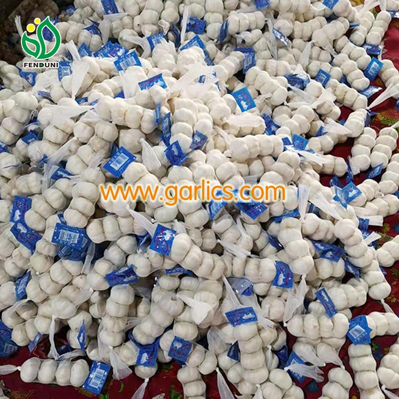 garlic strings for sale