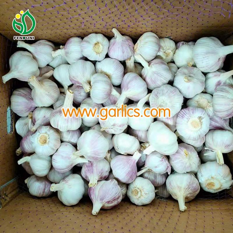benefits of eating garlic for skin